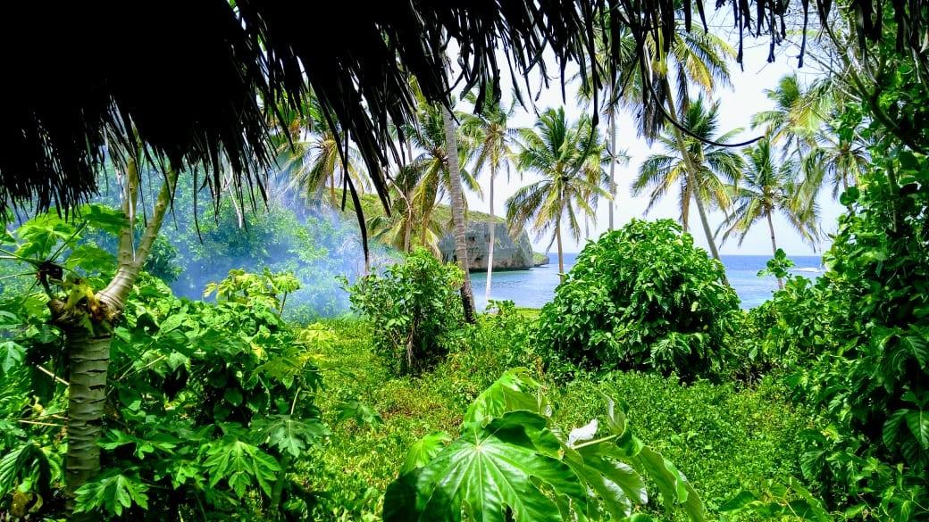 Samana 2 dni w raju (15w1)